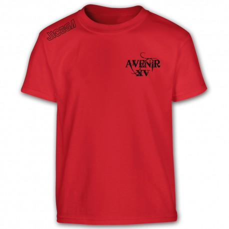 Tee-shirt Aka AVENIR XV